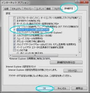 インターネットオプションの詳細設定